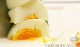 Салат из курицы с ананасом и грибами: Яйца очистить и мелко нарезать.
