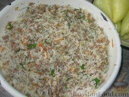 Патиссоны, фаршированные рисом и мясом: Посолим, приправим. Смешаем с рисом и порезанной  зеленью. Я еще добавляю карри.