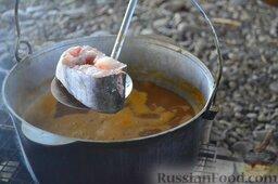 Халасле - венгерский рыбный суп: Отправляем в котелок нарезанного  большими кусками пангасиуса (или сома, щуку).