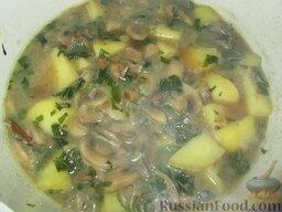 Суп-пюре из шампиньонов и картофеля: Залить бульоном. Как только закипит, добавить нарезанный картофель. Бульон должен покрывать овощи на 2 см. Варить около 15 минут.
