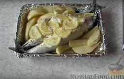 Фаршированная скумбрия: При желании можно добавить картофель. Накрываем фольгой и отправляем в духовой шкаф на 45 мин. при температуре 200 градусов.