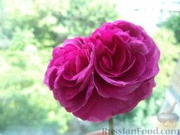 Лепестки роз, перетертые с сахаром: Как приготовить варенье из лепестков роз без варки:    Чайную розу срезать вместе с прицветником.