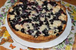 Пирог с черникой и творогом: Хорошо остудить и извлечь пирог из формы.