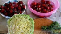 Салат из ранней капусты с редисом: Подготовить ингредиенты для салата из ранней капусты с редисом.