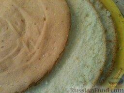 Творожный торт I: Остывший бисквит разрезать на 3 пласта.
