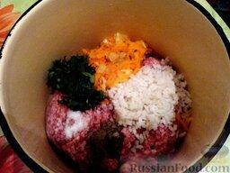 Ленивые голубцы (6 порций): Фарш выложить в кастрюлю.  Добавить предварительно отваренный в большом количестве воды рис, обжаренную морковь, петрушку и лук, мелко нарубленную зелень, соль, перец.   Все тщательно перемешать.