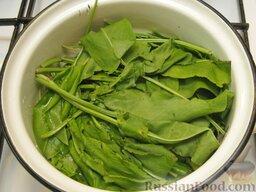 Щи зеленые из щавеля: Щавель перебрать, тщательно промыть, сложить в кастрюлю, добавив чуть-чуть воды, закрыть крышкой и потушить 3-4 минуты.