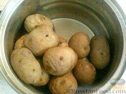 Запеканка картофельная со щавелем: Как приготовить запеканку картофельную со щавелем:    Сварить в подсоленном кипятке картофель. Для этого картофель тщательно вымыть, залить водой, довести до кипения, добавить 1 ч. ложку соли. Убавить огонь до слабого, накрыть крышкой и варить 30 минут. Охладить картофель.